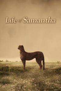 Life of Samantha