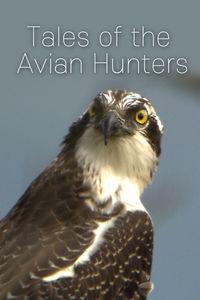 Tales of the Avian Hunters