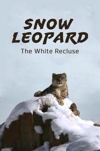 Snow Leopard, The White Recluse