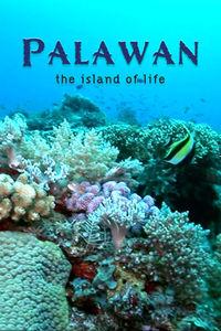 Palawan, the island of life